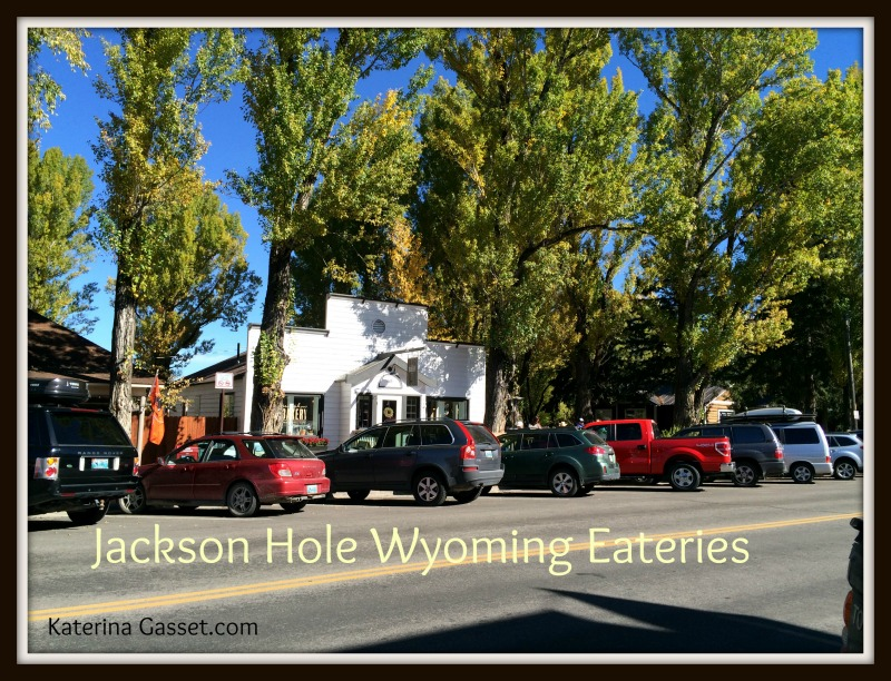 Jackson Hole Wyoming business for sale commercial real estate