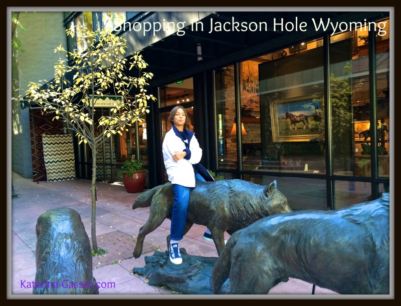 move to Jackson Hole Wyoming homes for sale